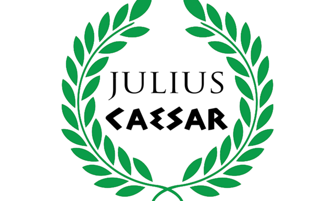 an overview of the use of suspense in julius caesar a play by william shakespeare Introduction, summary, shakespeare: julius caesar , english texts, year 9, nsw this chapter will provide an introduction to the play julius caesar, written by william shakespeare.